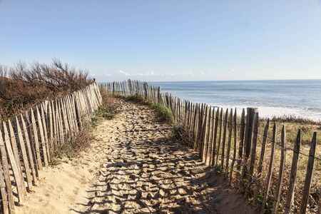 sea beach: Footpath between wooden fences on the Atlantic Dune in Brittany, in north-west of France.