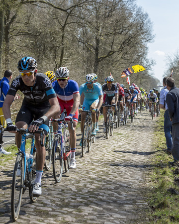 Trouee d'Arenberg,France - April 12,2015: The French cyclist Arnaud Demare of FDJ Team riding in the peloton on the famous cobblestone road from the forest of Arenberg during the Paris Roubaix 2015 race. Editöryel