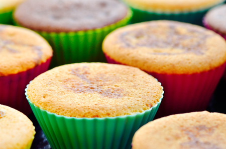 Closeup of fresh baked muffin with cacao and chocolate in colored shaped Stok Fotoğraf