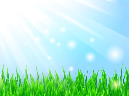 bright sun over the green grass and blue sky  Stock Vector - 8056879