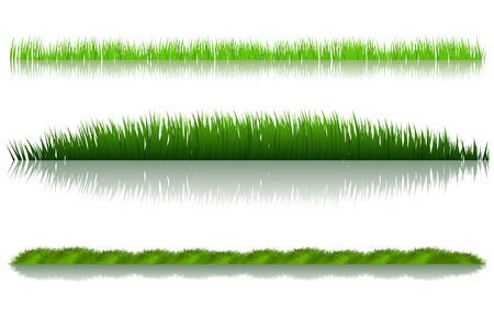 green grass set over white background Stock Vector - 8544116