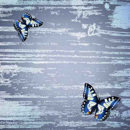 blue wooden background with butterfly Vector