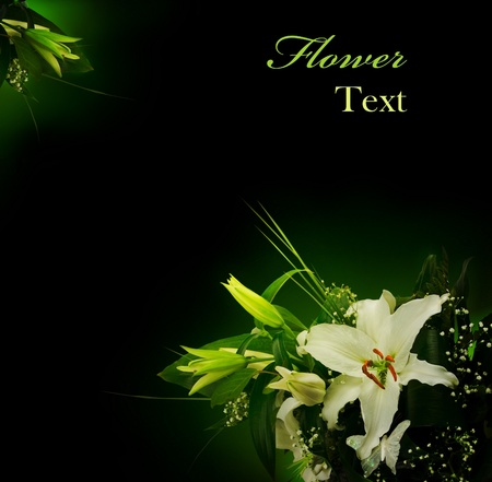 bouquet of lilies and green leaves over black with copyspace Stock Photo - 9505874