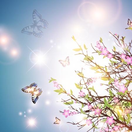 blinking: de fondo brillante de la primavera con los cerezos en flor y la mariposa