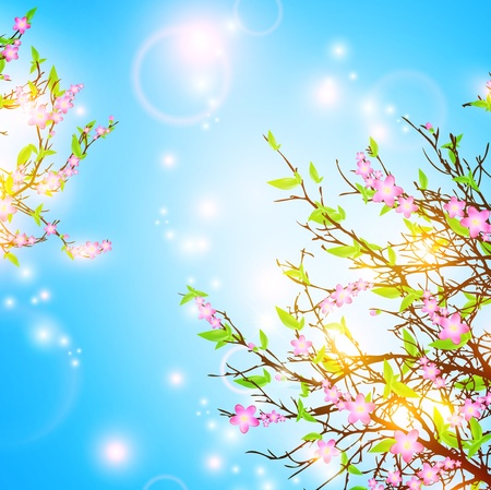 bright spring background with cherry blossom Vector