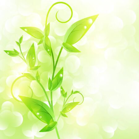 Green sprout with drops at leaves over fresh green background Vector