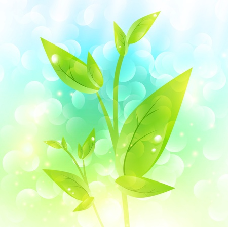 Green sprout with drops at leaves over fresh natural background Vector