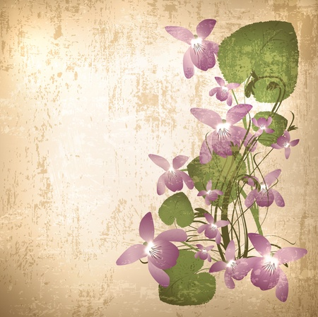 Vintage grunge floral background with wild violet flowers Çizim