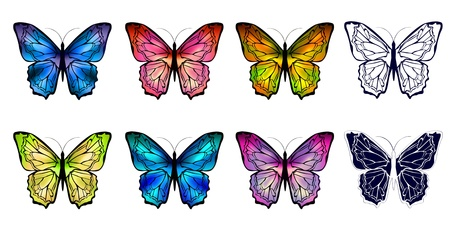 different multicolored butterfly collection over white background Stock Vector - 12486560