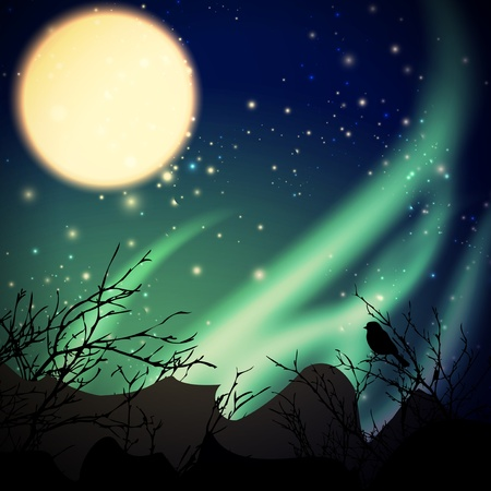 night with northern lights and moon Stock Illustratie