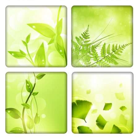 ferns: Eco background collection with green leaves