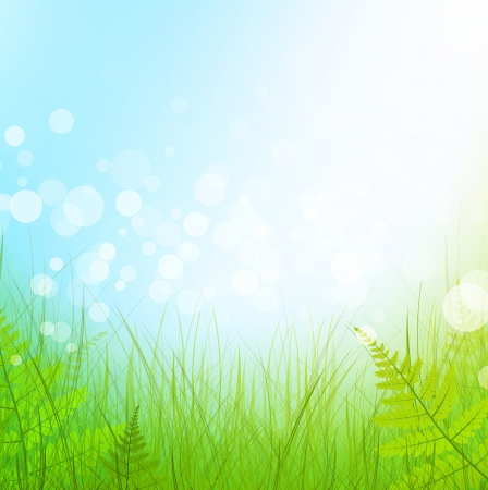 green grass meadow over blue sky background Stock Vector - 14690489