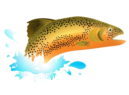 salmon fishing: Salmon In Blue Water Splash Over White Background Illustration