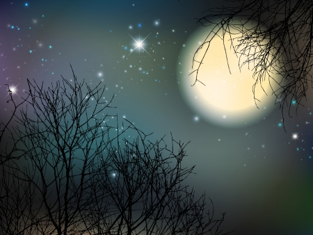 Night With Big Moon and Trees Vector