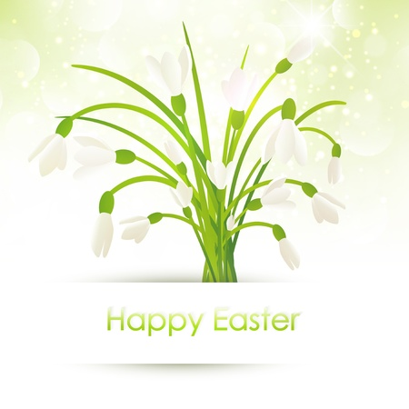 Happy Easter Greeting With Snowdrop Flowers Over Bright Background Stock Vector - 17499499