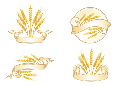 ribbon pasta: Wheat Label Collection Over White, Copyspace at Ribbon