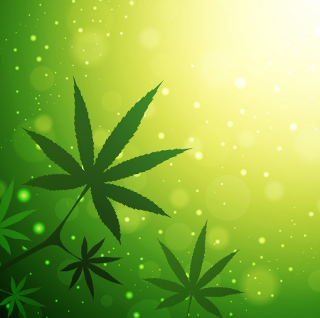 Cannabis Leaves Over Green Sunny Background, Copyspace