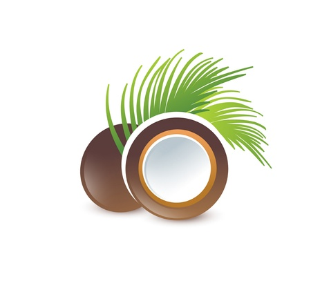 coconut leaf: Coconut With Green Palm Leaves Over White Background