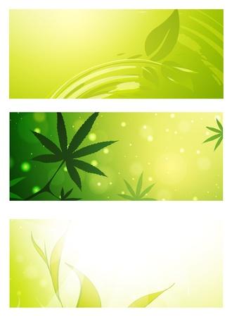 cannabis leaf: Green Eco Banner Set Over White Background Illustration
