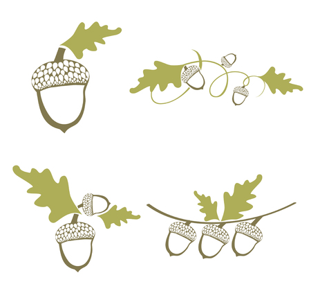Acorn Design Collection Over White Background Vector