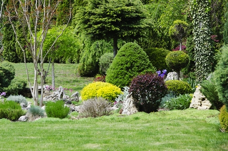 landscaped: Photo of the Gardening and Landscaping With Decorative  Trees and Plants