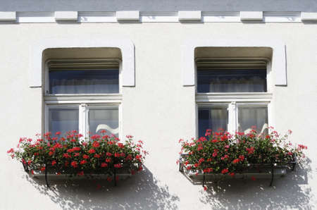 windows frame: Windows With Flowers