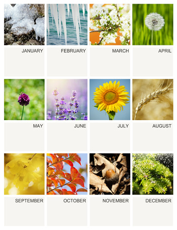 empty everyyear calendar template with seasonal photos stock photo