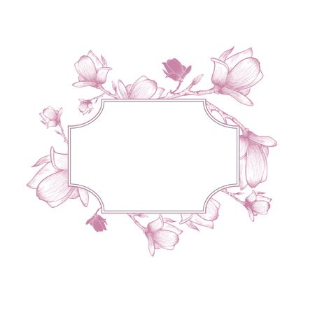 plant delicate: Vintage Spring Magnolia Blossom Flower Frame Over White Background