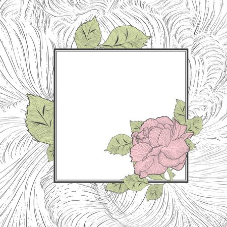 borders plants: Colored Abstract Vintage Rose Flower Frame, Copyspace Illustration