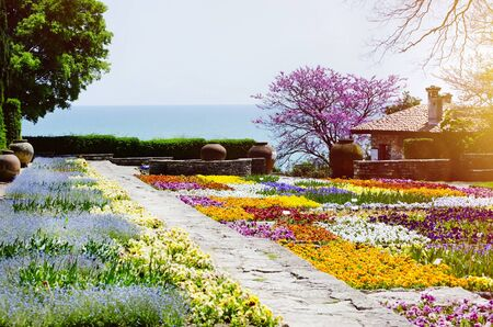 botanical garden: Bulgaria, Balchik Palace, Spring Blossom Stock Photo