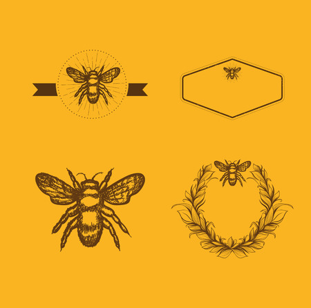 Bee and Honey Logo Design Template Collection, Copyspace
