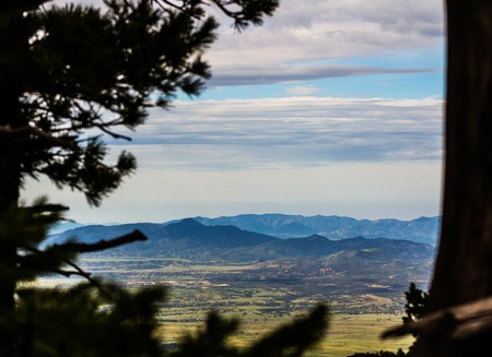 sonoran: Behind trees view of Sonoran desert mountains. Stock Photo