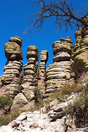 national monument: Stone Hoodoos at Chiricahua National Monument in Arizona, USA.