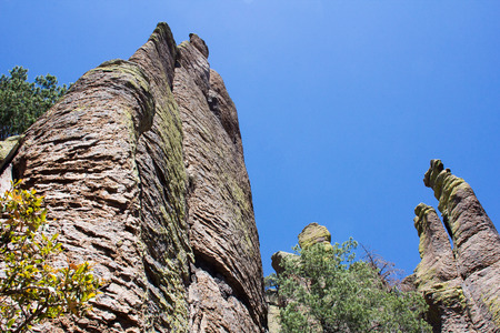 characterize: The unique vertical stone formations that characterize the Chiricahua National Monument