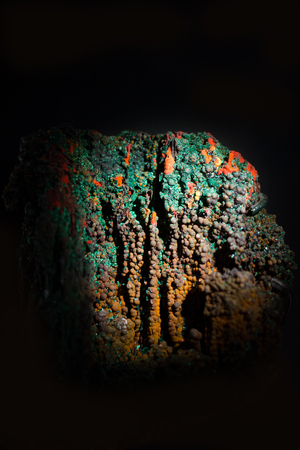explored: View of a valuable Bisbee mineral - isolated on black. Stock Photo