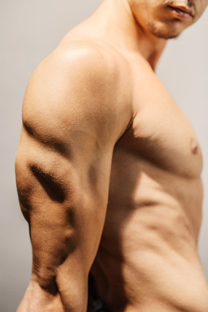 triceps: Closeup of a well defined mans triceps Stock Photo