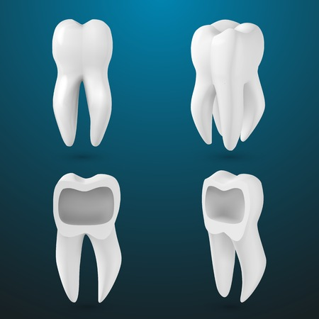 Illustration of Realistic 3D Tooth Set. Healthy Teeth Set Care Product Template