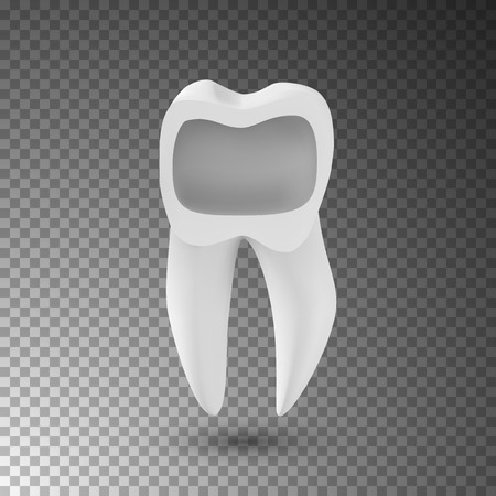 Illustration of Realistic 3D Tooth. Healthy Teeth Care Vector Product Template Isolated on Transparent Background