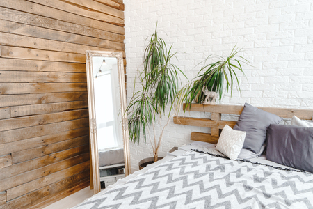 Studio daylight interior with mirror, plant in vase, bed and pillows
