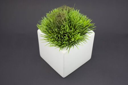 White vase with fake grass on it. Stock Photo - 4170637