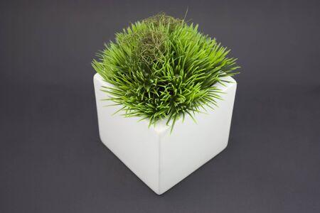 White vase with fake grass on it. Stock Photo - 4170637
