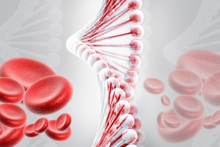 nucleotides: ADN con c�lulas de la sangre  Foto de archivo