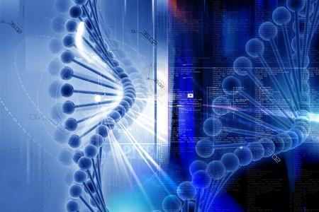 nucleic: 3d dna in digital design