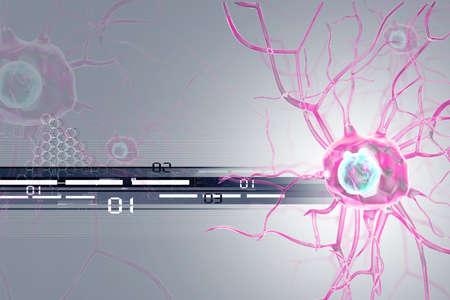 cellule nervose: cellule nervose 3D  Archivio Fotografico