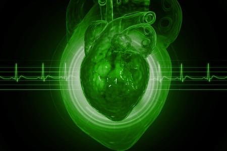 ecg heart: Human heart