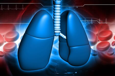 Human lungs in digital design Stock Photo - 8057709