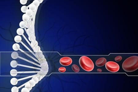 nucleotides: ADN 3D con c�lulas sangu�neas en dise�o digital