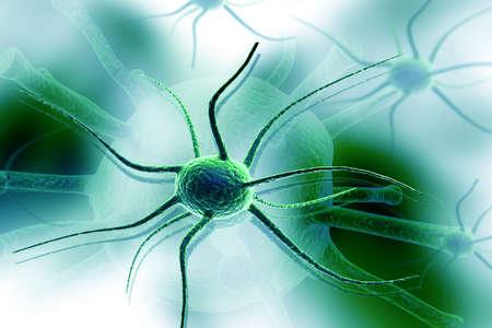nerve cells: 3d nerve cell