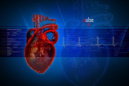 Human heart in digital design Stock Photo - 8057697