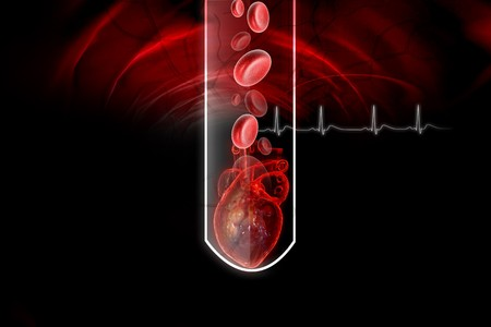 conform: Human heart and  blood cell in test-tube Stock Photo